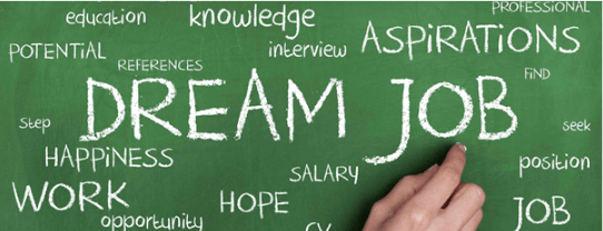 Offered economics specializations and jobs